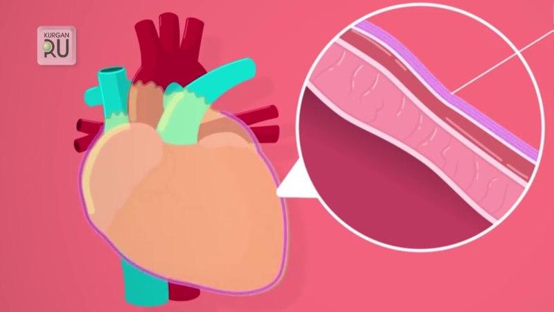 Клиника «Мед–Престиж»: походы к детскому кардиологу должны быть регулярными.