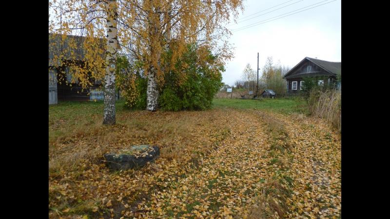 Деревня Миновское Бежецкого района. Октябрь 2017