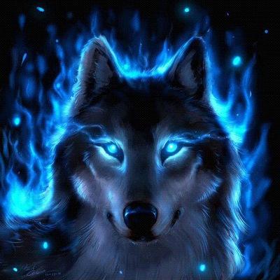 Im Wolf