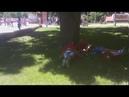 Уснувшие на набережной после диких плясок тунисцы попали на видео в Волгограде