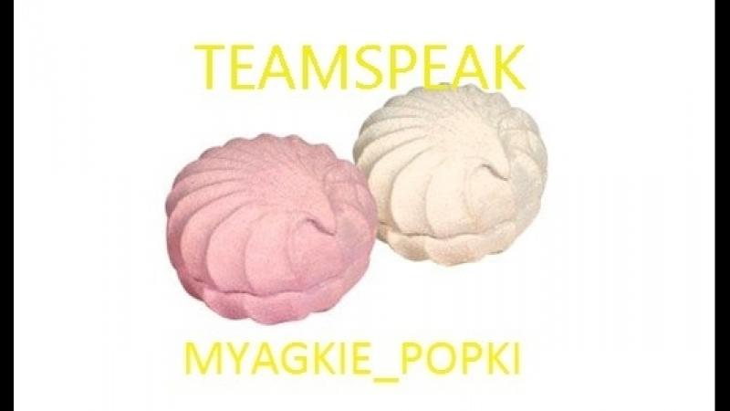 (18) Antihype vs Myagkie_Popki - BMSTU Winter Major 2018 Grandfinal - Подслушано в тимспике МП [peqas]
