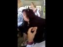 переселенка з Донецька бризнула перцевим балончиком учениці в очі на Останньому дзвонику