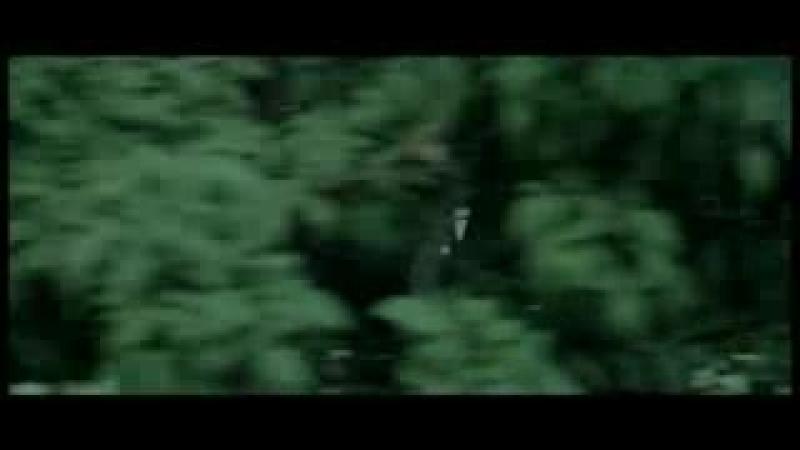 Videopoisk.mobi_Sohbet_Jumayew_-_Ezizim_[hd]_2013_Ayratyn_shekilli_aydym_36.3gp