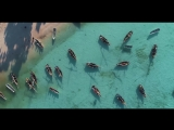 DJI - Mavic Air - Zanzibar Paradise