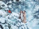 Пусть этой Зимой каждый найдёт дорогу туда, где не обманывают, ценят, уважают, любят, где кругом счастье, а главное туда, где в