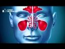 Вред лечения НАРОДНЫМИ СРЕДСТВАМИ. Чем опасна народная медицина