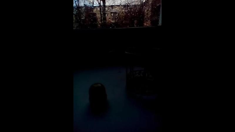 попробуй не зависьни видео про лизун