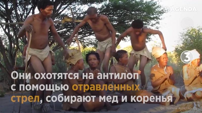 Где можно увидеть древние племена