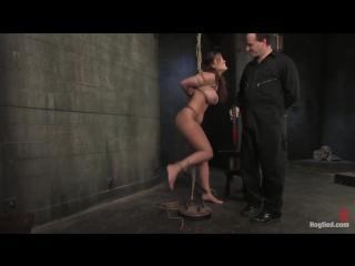 Christina Carter - HogTied