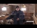 Москвич организовал козотерапию в Ржаксинском районе