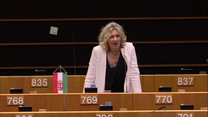 They have no idea of the Hungarian legislation and they criticize us, Morvai said in Brussels