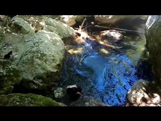 Река Кокозка, температура воды градусов 10)