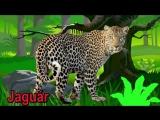 zvuky zvířat pro děti online (100 zvířat v lese, zvířat v zoo, zvuky domácích zv