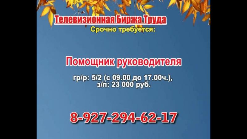 23 ноября _23.50_Работа в Тольятти_Телевизионная Биржа Труда