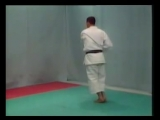 karate kata shotokan & bunkai (bassai dai).mp4