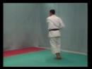 Karate kata shotokan bunkai (bassai dai).mp4