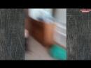 ЭТО РОССИЯ ДЕТКА!СМЕХ И ГРЕХ ЛУЧШИЕ РУССКИЕ ПРИКОЛЫ ЧИТО ПО НАШЕМУ 10 МИНУТ РЖАК.если понравилось видео прошу вас ставить лайк