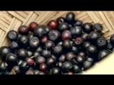 BBC «Викторианская ферма» (6 серия) (Познавательный, история, исследования, 2008)