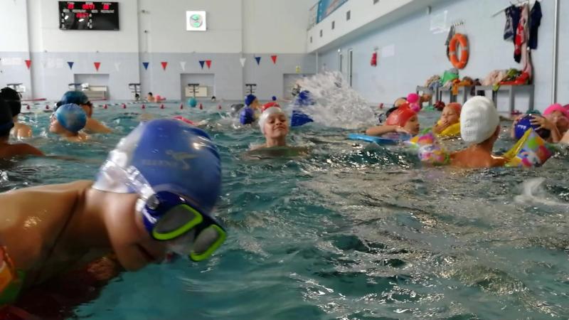 посещение бассейна июль 2018