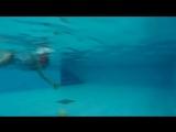 Инструктор по плаванию «MARINA CLUB» Ксения Пастушенко: Без ныряния не обходится ни один наш урок!