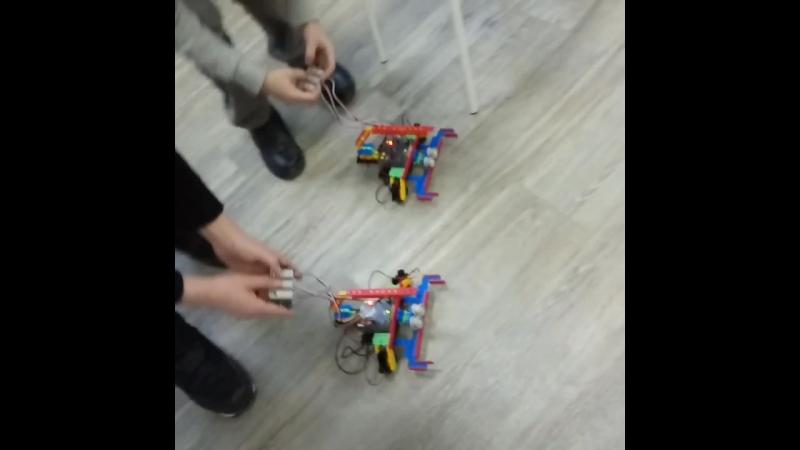модель Скорпиона