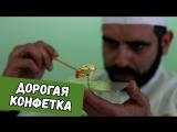 Дима Бикбаев. ХайпNews [18.03]