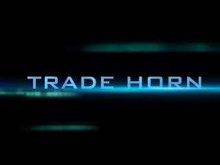 Trade HORN - программа для Олимп трейд Olymp Trade, Binomo бинарные опционы, криптовалюта, биткоин bitcoin, разгон депозита депо