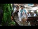 Таиланд. Паттайя. Змеиная ферма петушиный бой, шоу со змеями.