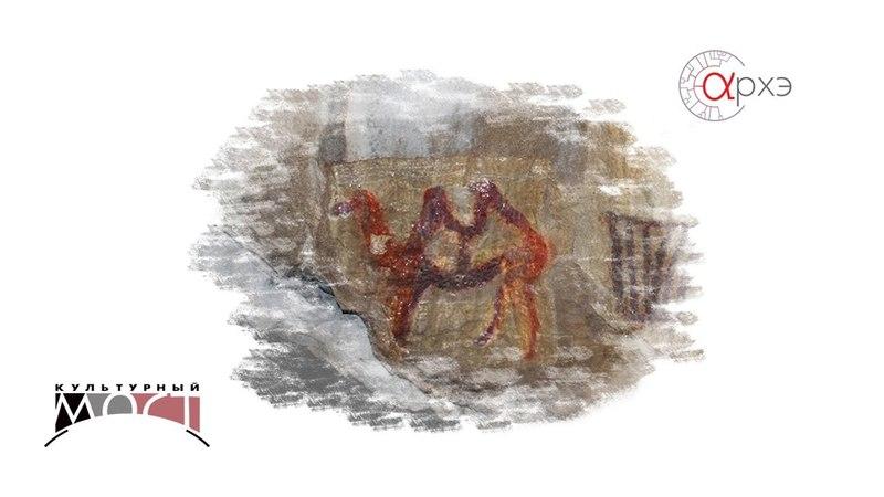 Владислав Житенёв: Верблюд в Каповой пещере