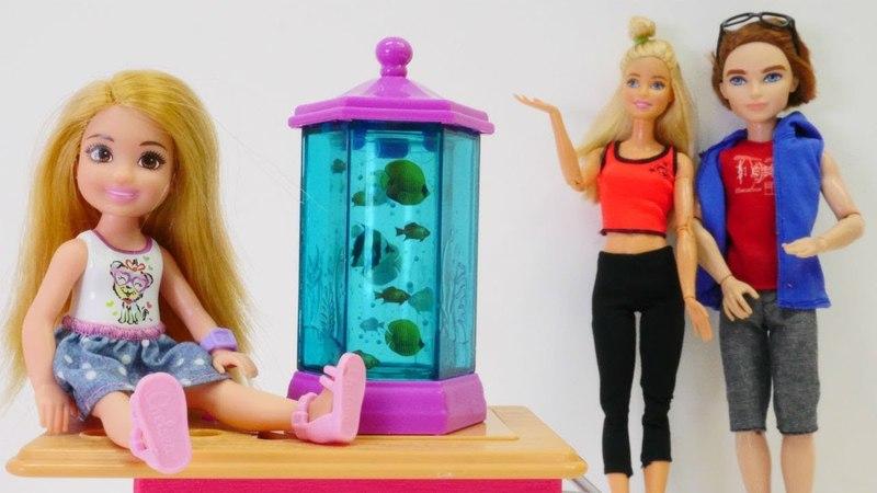 Barbie ailesi Chelseaye akvaryum ve balıklar alıyor
