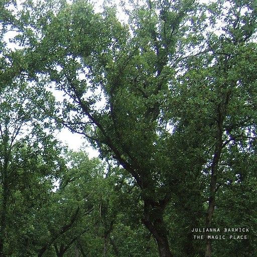 Julianna Barwick альбом The Magic Place