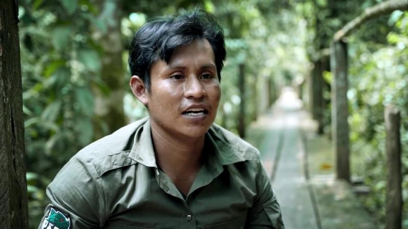 Дикая Амазонка. Встретились с анакондой. Как выжить в джунглях ночью