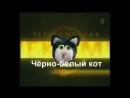 Телекомпания Чёрно-белый кот предстовляет
