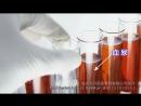 IgA肾病英文音与字幕版 12.3_x264
