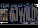 Dj Wild - Мировые диджеи электронной музыки!