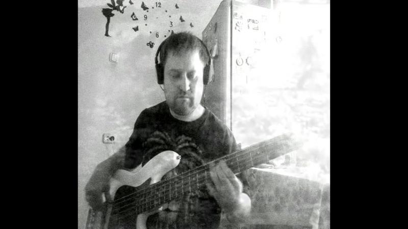 Ды.М - Земля и Гильзы ( bass cover )