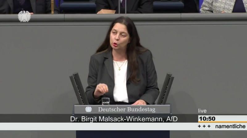 Bundeswehreinsatz im Irak Bundestag- Birgit Malsack Winkemann 12 12 2017