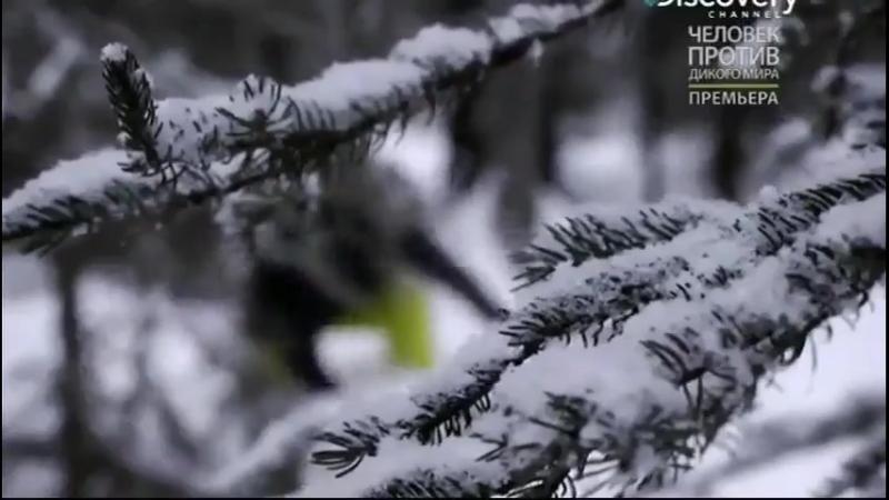 Оголтелая рыбалка s2e04 Аляска, на снегоходах за щукой