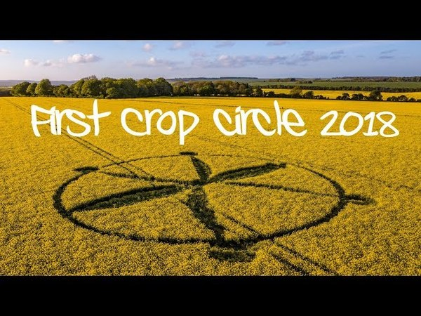 First UK Crop Circle 2018 West Knoyle Wiltshire UK 80518