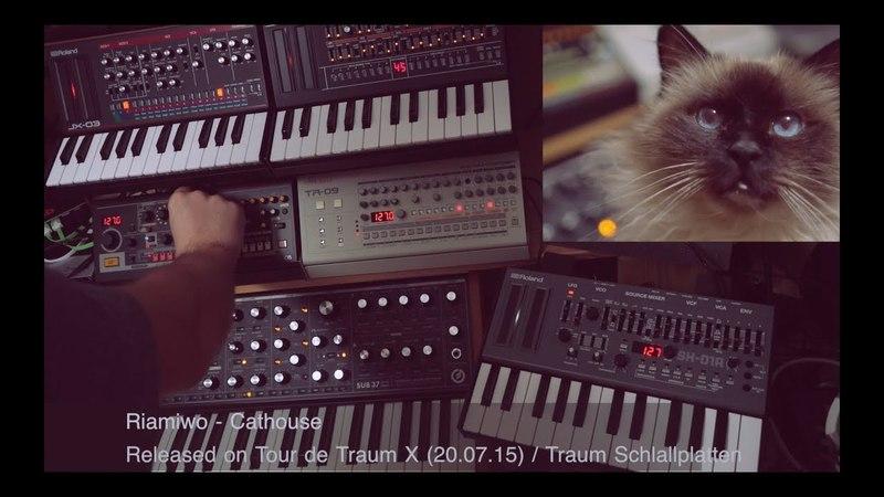Riamiwo feat. Bruno - Cathouse (Livesession) Tour de Traum X Traum (Riamiwo StudioVlog 74)