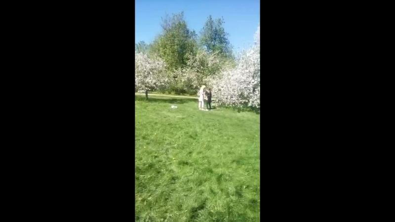 коломенское яблоневый сад фотосессия