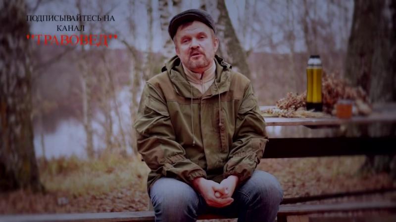 Травовед Обращение Сергея Викторовича к зрителям канала