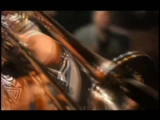 Maceo_Parker_-_Shake_everything_you've_got_480P-reformat-16842960.mp4