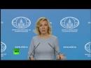 Захарова попросила Кадырова пригласить в Чечню финского глиномеса спросившего про ЛГБТ