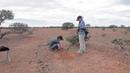 Gold Prospecting Western Australia - Cue