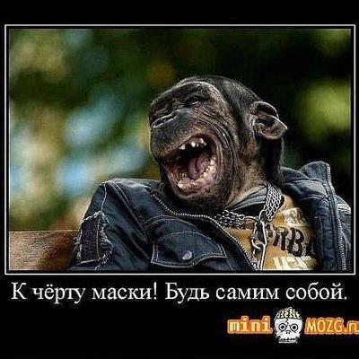Алексей Печенег