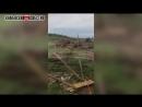 В Каменском районе смерч уничтожил березовый колок, повредили постройки и дома1