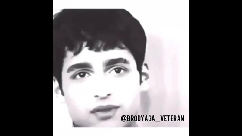 Brodyaga_veteranBj6mqyklST5.mp4