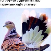 Татьяна Болвах
