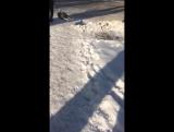 Двое молодых парней помогают чистить снег бабушке. Хотим передать эстафету всем талдыкорганцам.